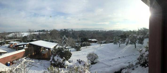 Very unusual — lots of snow in Rome when we arrived. This is Lorenzo's parents' garden.